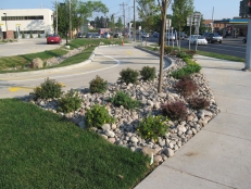 Royal Car Wash Bioretention System