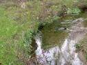 spring-valley-4 - Copy